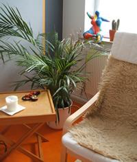 Kunsttherapie Praxis in Kassel
